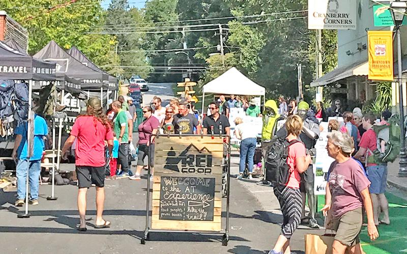 Trail Fest returns to Dahlonega this weekend